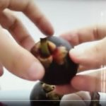 Mangostinos easy öffnen